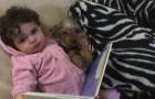 Ecco cosa fanno ogni sera questa bambina e il suo cane: la loro dolcezza è irresistibile
