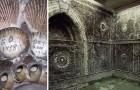 Un agriculteur découvre une grotte souterraine recouverte de coquilles : un mystère encore non résolu