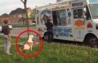 Hij wacht netjes in de rij om een ijsje te halen, maar als het zijn beurt is? Wow!