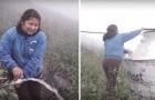 Dit dorp verkrijgt stromend water uit het oogsten van mist