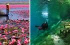 Een aantal spectaculaire beelden die de adembenemende schoonheid van de natuur onthullen