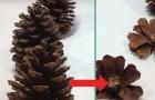 Taglia a metà delle semplici pigne e riesce a creare una decorazione sorprendente