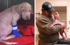 Un cucciolo viene adottato dall'uomo che gli ha salvato la vita: la sua reazione è uno spettacolo