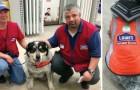Hij kon geen werk vinden vanwege zijn geleidehond: bij het zoveelste sollicitatiegesprek gebeurt er iets ongelooflijks!