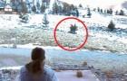 Il filme sa femme pendant qu'elle sort de la maison: ils vont recevoir une visite fabuleuse