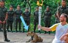 Prima lo usano per le foto, poi lo uccidono: la triste vicenda del giaguaro delle Olimpiadi