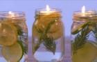 Deixe os mosquitos longe com um remédio simples, natural e econômico!