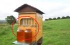 Esta curiosa colmena permite de extraer la miel en el modo mas simple y sin molestar a las abejas