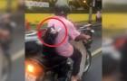 Ze filmen een scooterrijder met een bijzondere passagier... let goed op de expressie van de kat!
