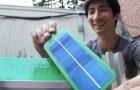 Die Erfindung, die dir ermöglicht, Solarzellen zu bauen... in deinem eigenen Garten