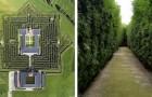 Het grootste doolhof van de wereld? Het bevindt zich in Italië en telt meer dan 200.000 planten