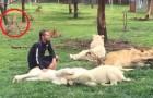 Een luipaard valt deze man van achteren aan: hij krijgt hulp uit onverwachte hoek!