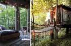 La favola diventa realtà: questa magnifica casa sull'albero esiste davvero, lasciatevi conquistare!