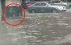 A guy sees something during a flood -- his action will be DECISIVE