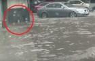 Ein junger Mann bemerkt etwas während einer Überschwemmung: sein Einsatz war AUSSCHLAGGEBEND