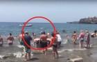 Un branco di balene rischiava lo spiaggiamento: l'intervento dei bagnanti vi emozionerà