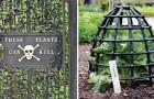 """Ontdek Met Ons Samen De Dodelijkste Planten Ter Wereld In """"De Giftuinen"""""""