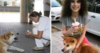 Deze hond heeft 6 dagen zitten wachten buiten het ziekenhuis... en waarom dat is zo schattig