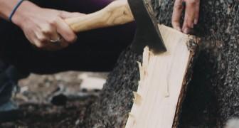 Ecco il metodo svedese per ottenere un braciere da un solo ceppo di legna
