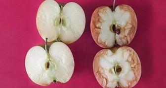 2 mele... contro il bullismo: scoprite l'affascinante lezione di questa maestra