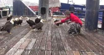 Il pescatore serve la colazione alle aquile: uno spettacolo di maestosità e... voracità!