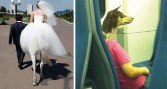 14 normale Fotos, die durch den Zufall und die Perspektive zu etwas Besonderem wurden