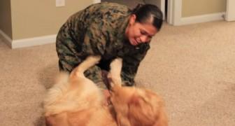 La soldatessa torna a casa: un saluto migliore non poteva aspettarselo