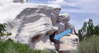 Cela semble être une simple roche calcaire mais il suffit de regarder à l'intérieur pour comprendre que ce n'est pas le cas !