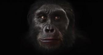 200 mil anos de evolução humana em 90 segundos: um espetáculo!