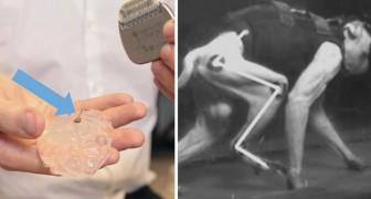 Un chip wi-fi torna a far camminare 2 scimmie paralizzate: ora si lavora per guarire gli uomini