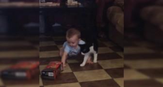 Un bambino e il suo speciale body guard: la costante presenza NON è apprezzata!