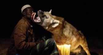 Welkom in Harar, de enige stad ter wereld waar hyena's welkom zijn