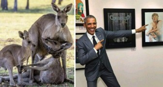 Fotomontaggi virali: ecco le più colossali bufale fotografiche circolate nel 2016