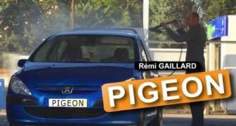 Rémi Gaillard : le pigeon
