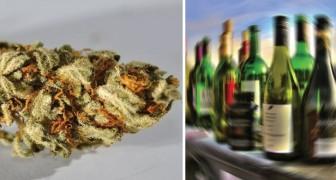 La Marijuana uccide 114 volte meno dell'alcol: questo studio mostra come stanno veramente le cose