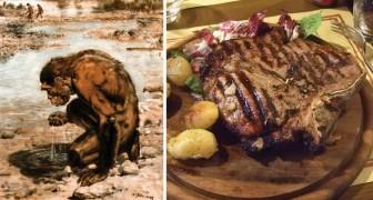 Senza consumare carne l'uomo non si sarebbe mai evoluto: ecco lo studio che lo conferma