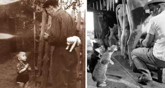 10 süße Fotos aus der Geschichte, die dir den Tag retten können