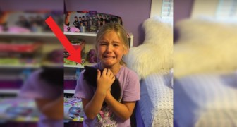 Un anno fa aveva perso l'amato gatto: la sorpresa che trova a casa la commuove profondamente!