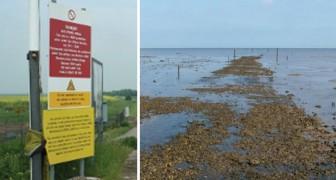 Wandelen voor angsthazen: In het zuiden van Engeland ligt het gevaarlijkste en meest bijzondere pad ter wereld