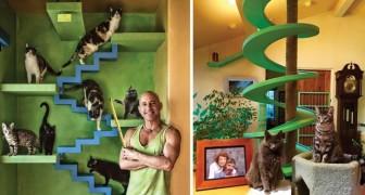 Adotta 15 gatti e trasforma la sua casa in una stanza dei giochi per felini bellissima e intelligente!