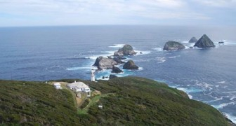 Payé pour vivre sur cette île DÉSERTE en Tasmanie : participeriez-vous à la sélection ?
