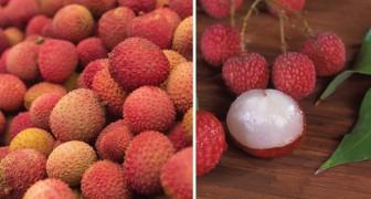 Kennt ihr diese Frucht? In Indien sind hunderte Kinder daran gestorben. Jetzt weiß man, warum