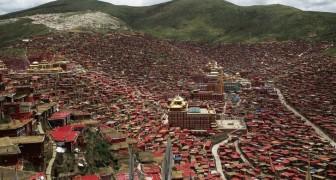 L'immenso villaggio della scuola tibetana: ecco come vivono 40.000 monaci a 4100 metri di altitudine