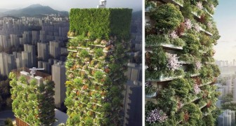 De eerste verticale bossen zijn ontworpen door een Italiaanse architect: zie hier zijn ontwerp