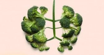 10 verdure alleate dell'organismo che ti faranno rimanere in salute