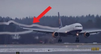Curious aircraft condensation effects!