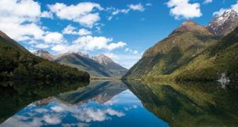 Séjour et avion gratuit pour aller à un entretien en Nouvelle-Zélande: qu'attendez-vous pour vous candidater?