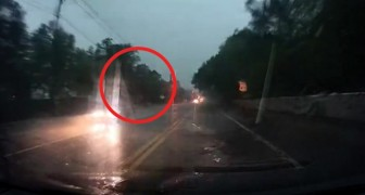 An incredible moment when lightning strikes a tree as a driver is passing!