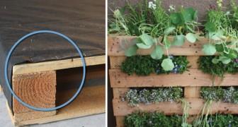 Zo maak je een palletmoestuintje ook geschikt als verticale tuim, perfect voor op het balkon