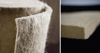 Isolanti termici in canapa e lana di pecora: la soluzione ecologica ed efficiente che salva l'occupazione